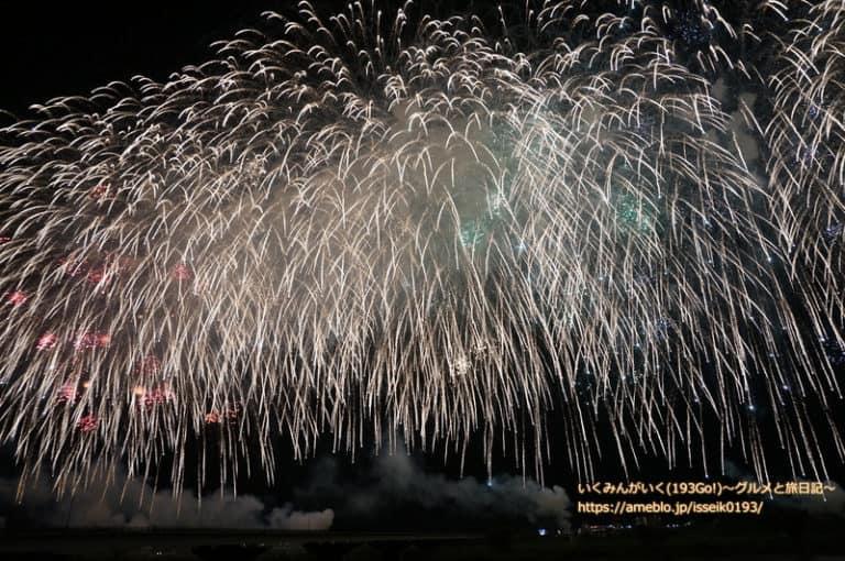 大会 2019 花火 長岡