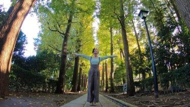【荻窪 スポット】大田黒公園の2019年の紅葉は⁈「紅葉ライトアップ」いちょう並木、生演奏と茶室で抹茶、他イベントも <動画あり>
