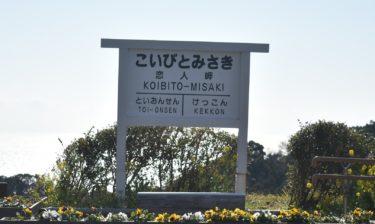 【西伊豆 観光】「恋人岬」恋人たちのフォトスポット!開放感あふれる景色一望