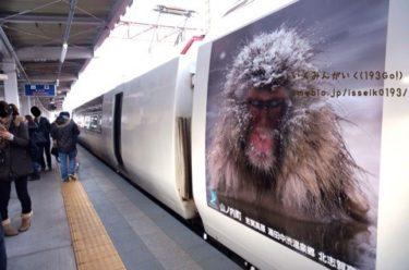 【長野 渋温泉】スノーモンキーに乗って 列車の旅 雪景色の温泉街