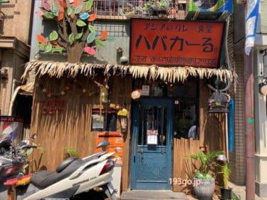 【吉祥寺 カレー】中道通りの「ハバカーる」独創的なアジアン雰囲気たっぷり!味わい深いスパイスカレーを。リーズナブルさも満足感