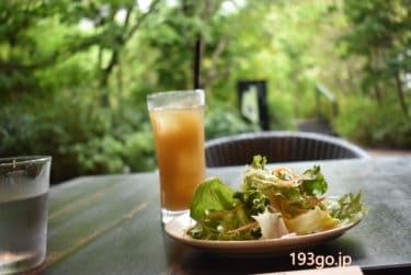 【赤坂・溜池山王 グルメ】赤坂インターシティAIR「マウカキッチン」緑が清々しいテラスで牛肉フォー&トロピカルドリンク