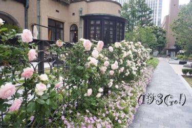 【赤坂プリンス クラシックハウス】紀尾井町ガーデン内の立派な洋館 5月には薔薇が咲き誇るイングリッシュガーデンに